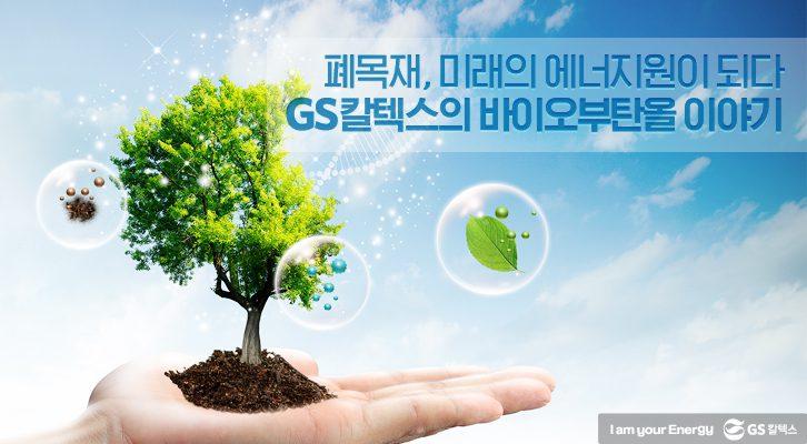 폐목재, 미래의 에너지원이 되다