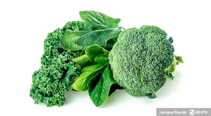 루테인이 풍부한 녹황색 채소